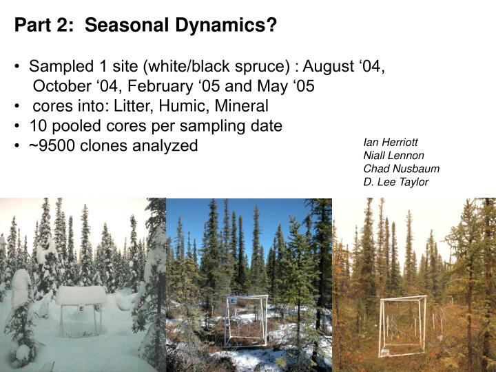Part 2:  Seasonal Dynamics?