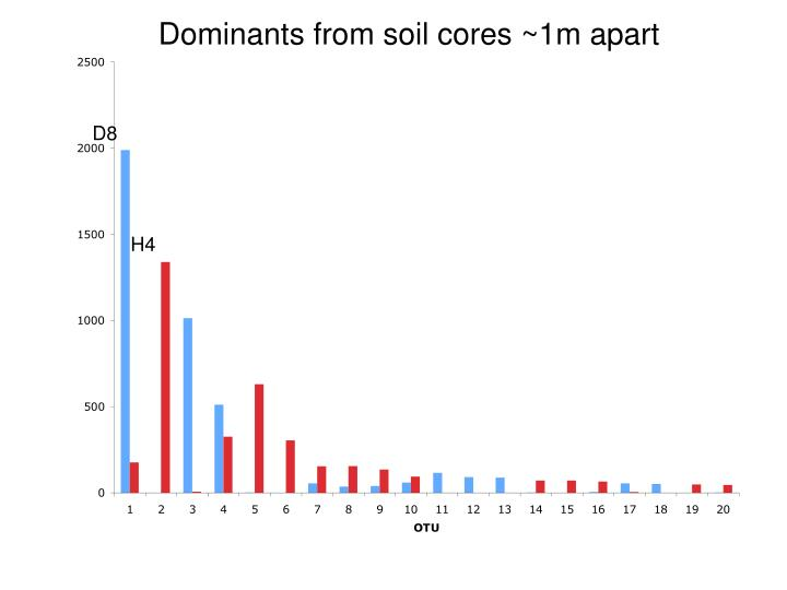 Dominants from soil cores ~1m apart