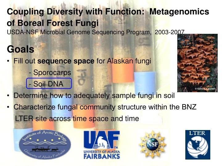 Coupling Diversity with Function:  Metagenomics of Boreal Forest Fungi
