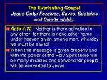 the everlasting gospel jesus only forgives saves sustains and dwells within