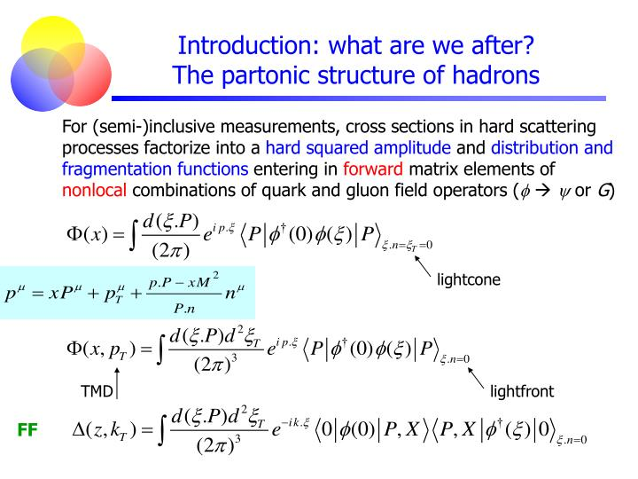 Introduction what are we after the partonic structure of hadrons