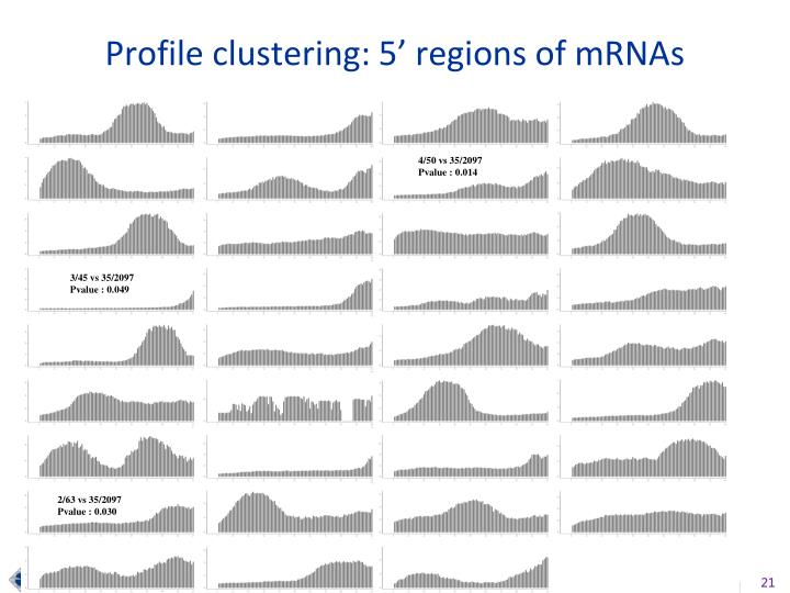 Profile clustering: 5' regions of mRNAs