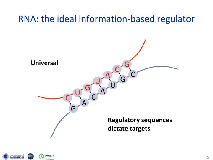 RNA: the ideal information-based regulator