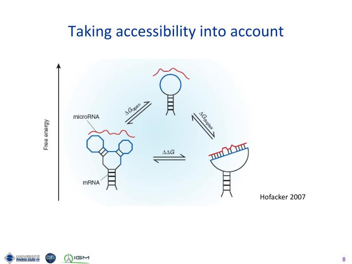 Taking accessibility into account