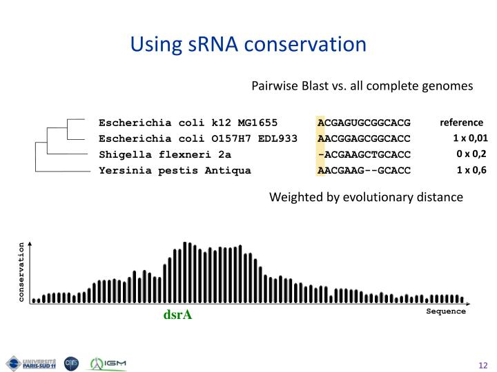 Using sRNA conservation
