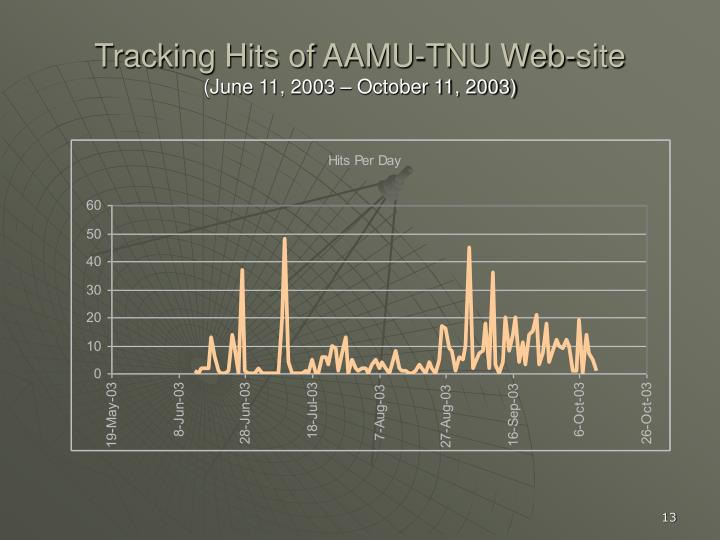 Tracking Hits of AAMU-TNU Web-site