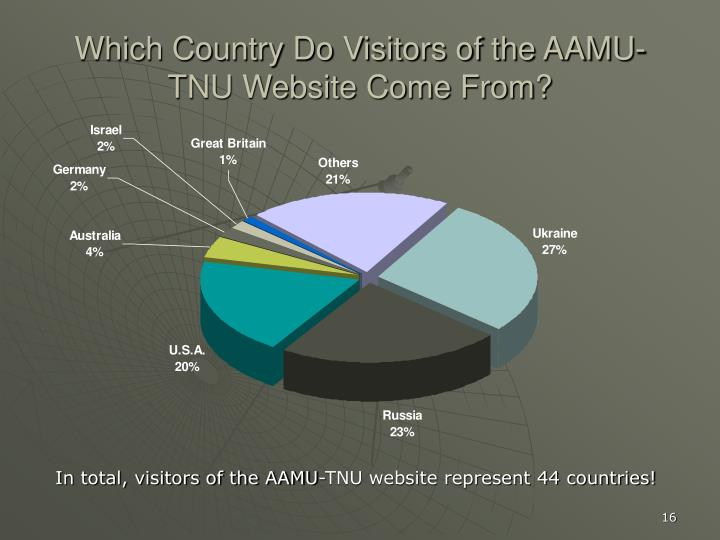 Which Country Do Visitors of the AAMU-TNU Website Come From?