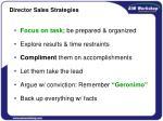 director sales strategies