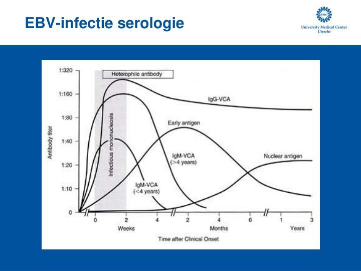 cmv virus en lever