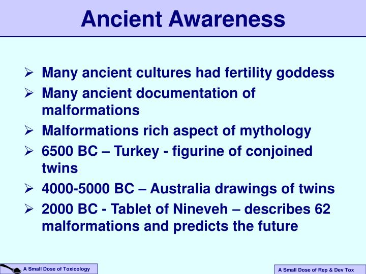Ancient Awareness
