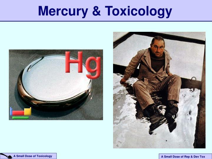 Mercury & Toxicology