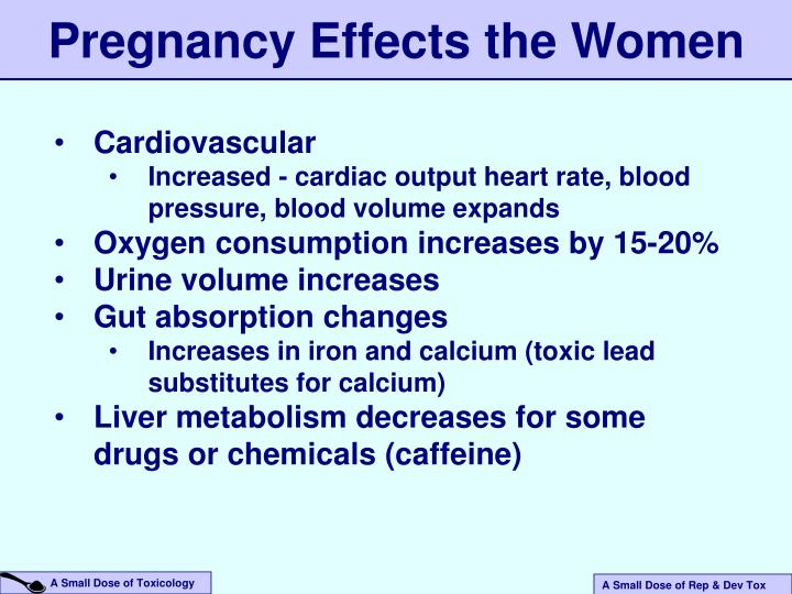 Pregnancy Effects the Women