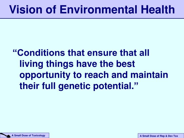 Vision of Environmental Health