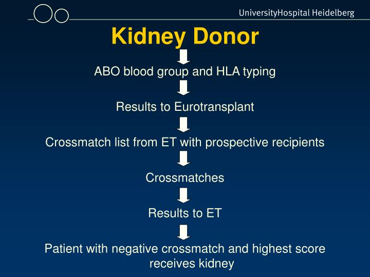 Kidney Donor