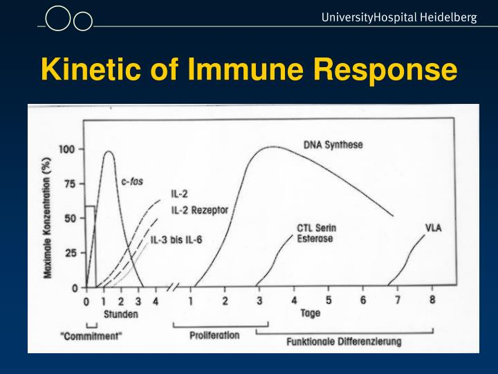 Kinetic of Immune Response