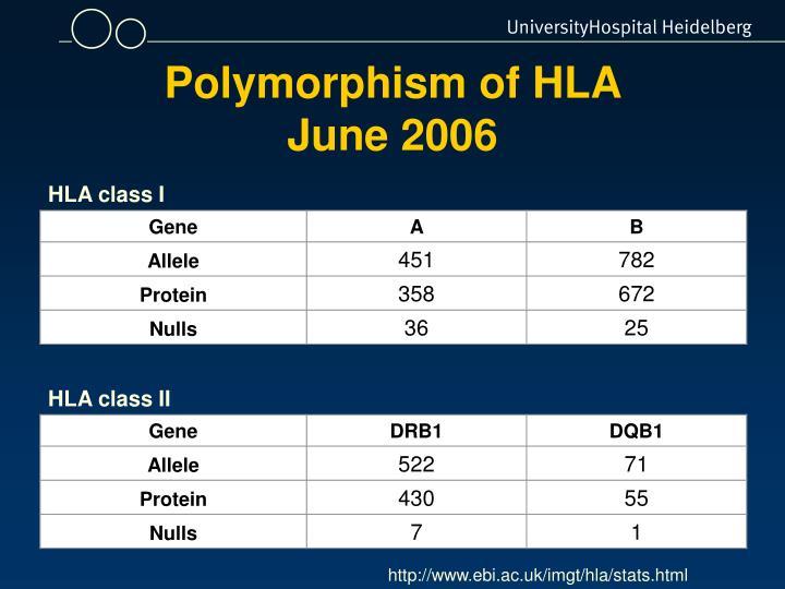 Polymorphism of HLA