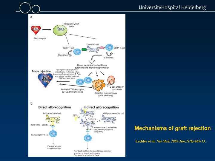 Mechanisms of graft rejection