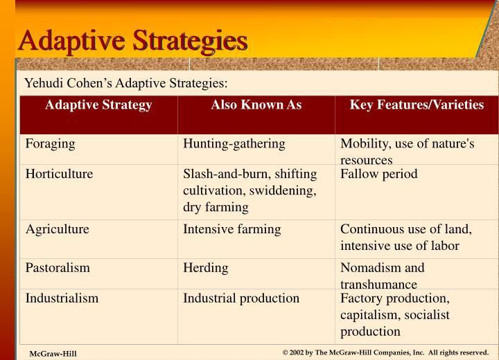 Adaptive Strategy