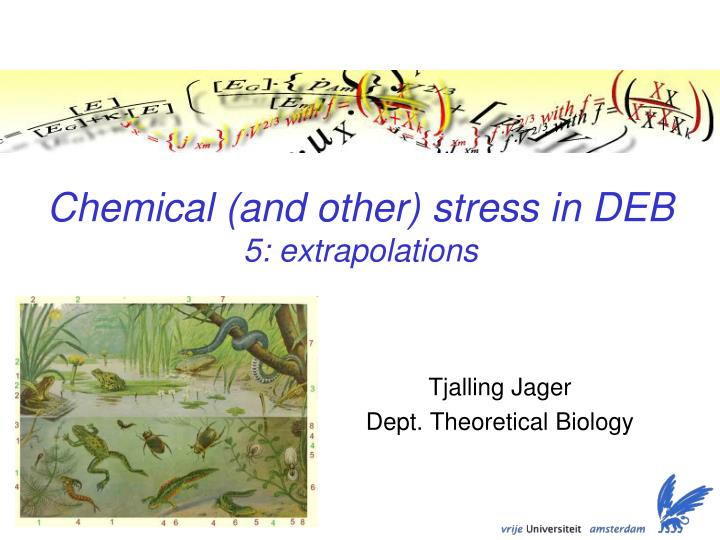 Chemical and other stress in deb 5 extrapolations