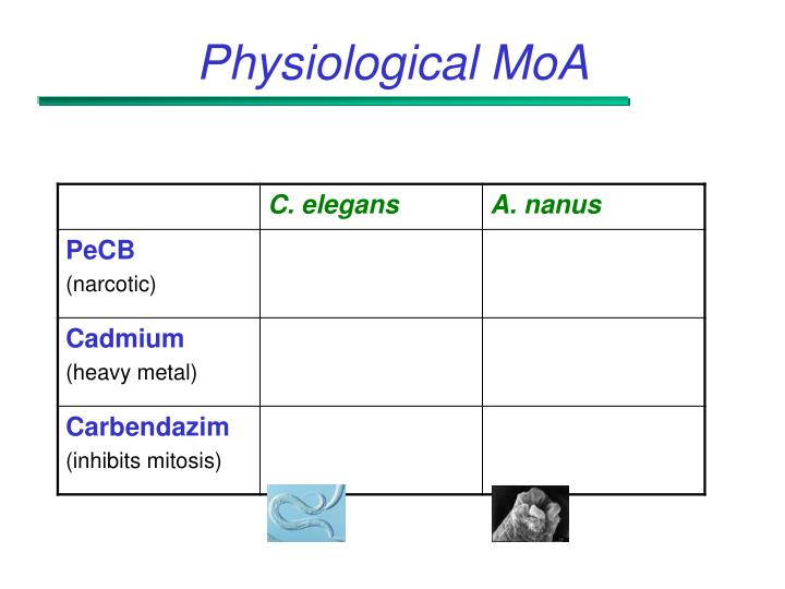 Physiological MoA