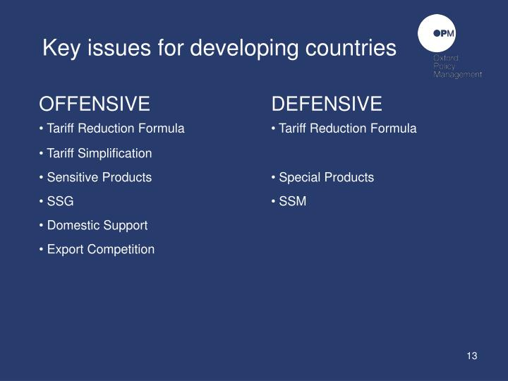 Key issues for developing countries