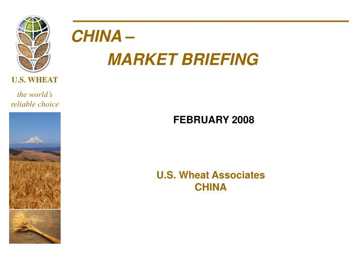 China market briefing