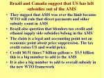 brazil and canada suggest that us has left subsidies out of the ams1