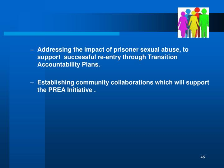 Addressing the impact of prisoner sexual abuse, to support  successful re-entry through Transition Accountability Plans.