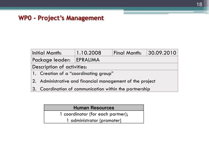 WP0 - Project's Management