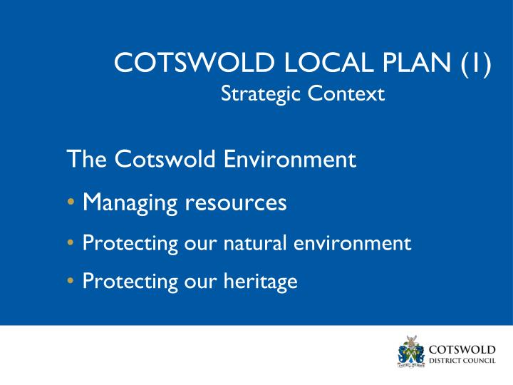 COTSWOLD LOCAL PLAN (1)