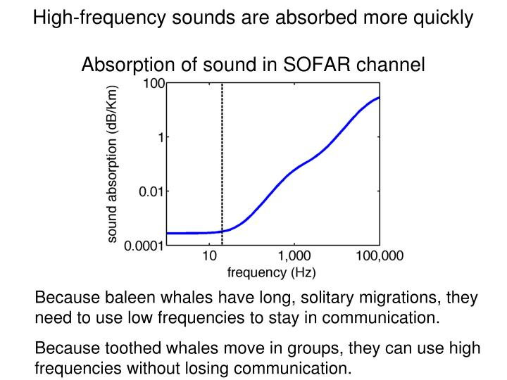 High-frequency sounds are absorbed more quickly