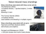 noise induced mass strandings
