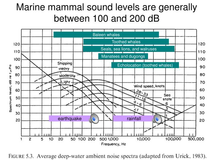 Marine mammal sound levels are generally between 100 and 200 dB