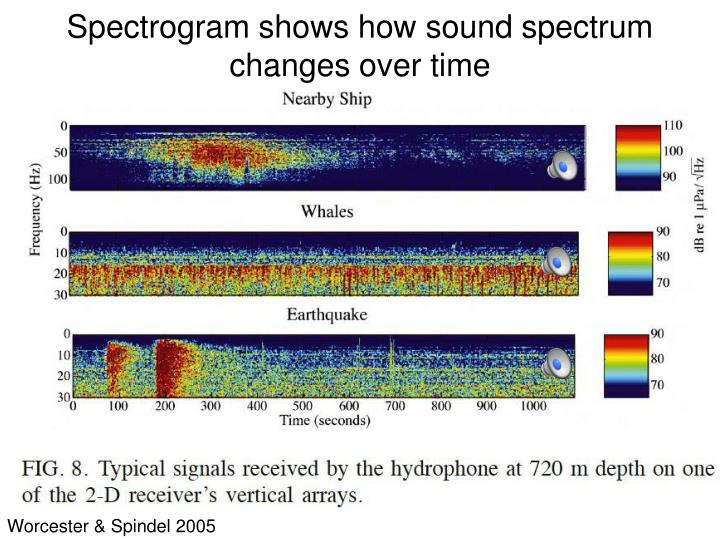 Spectrogram shows how sound spectrum changes over time