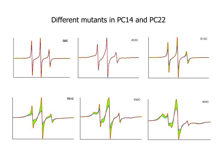 Different mutants in PC14 and PC22