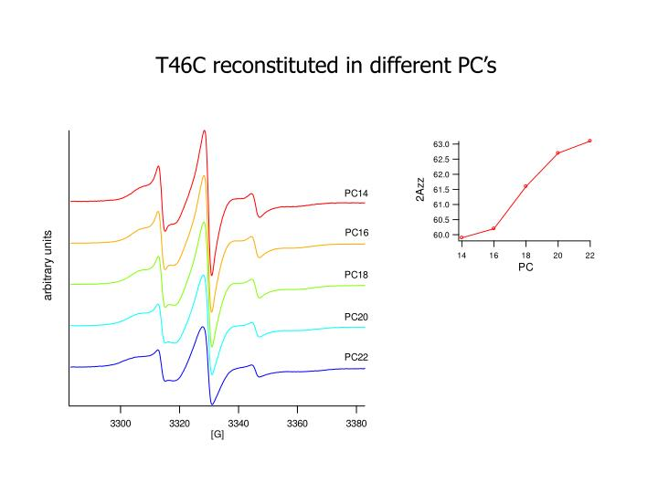 T46C reconstituted in different PC's