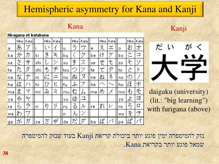 Hemispheric asymmetry for Kana and Kanji