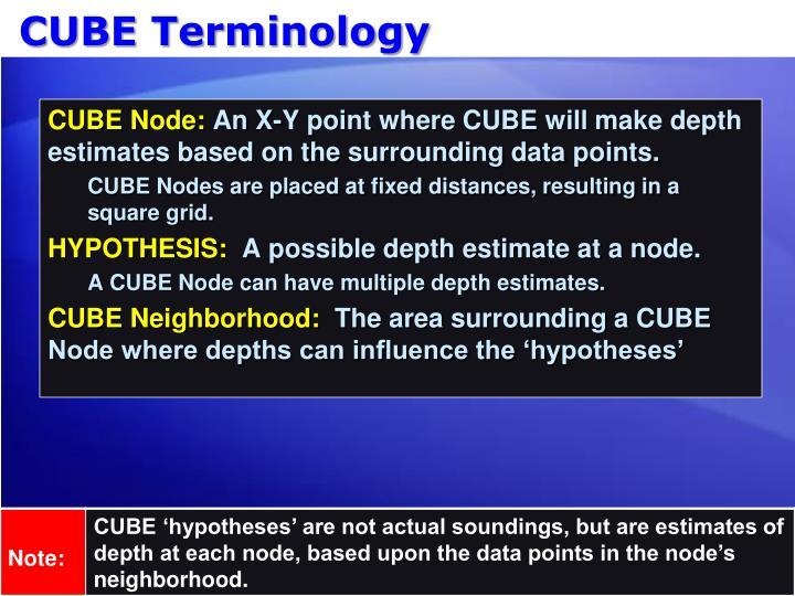 CUBE Terminology