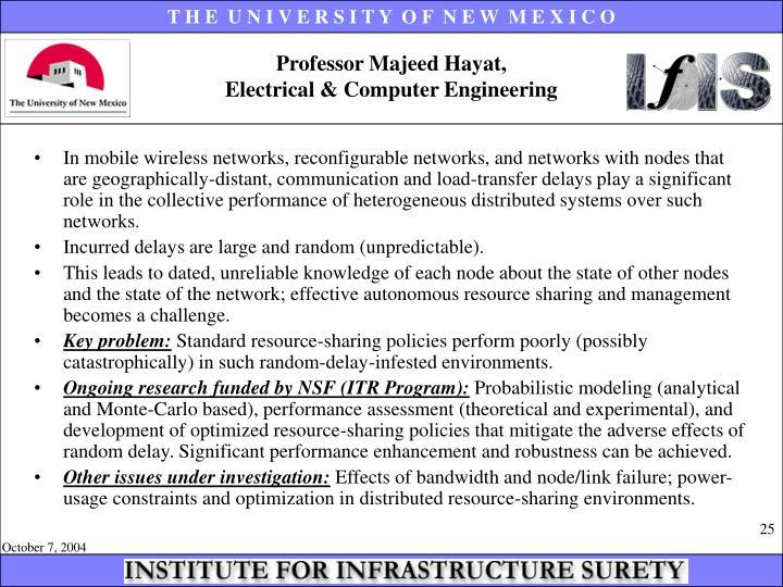 Professor Majeed Hayat,
