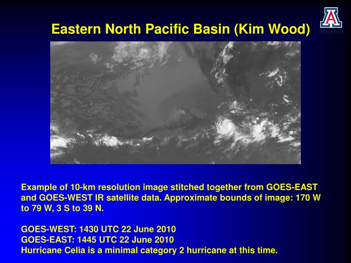 Eastern North Pacific Basin (Kim Wood)