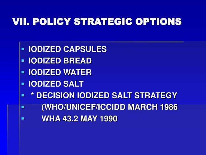 VII. POLICY STRATEGIC OPTIONS