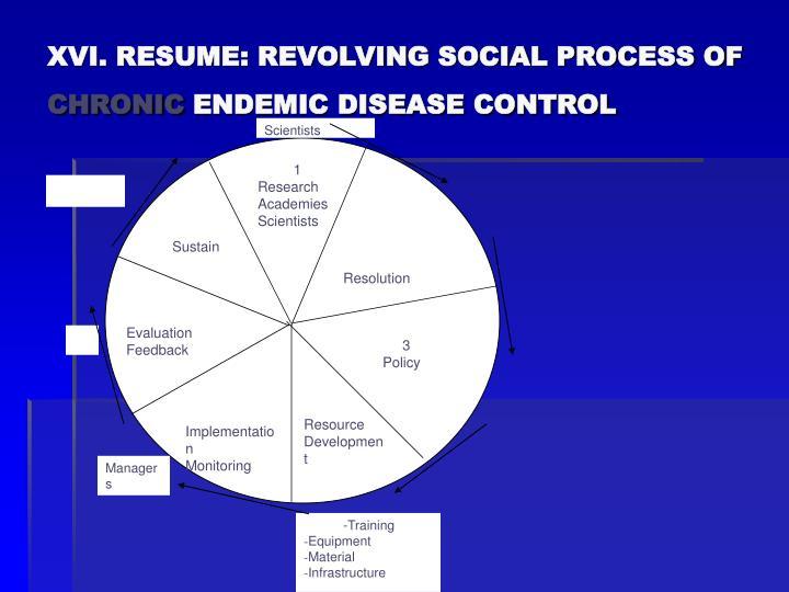 XVI. RESUME: REVOLVING SOCIAL PROCESS OF