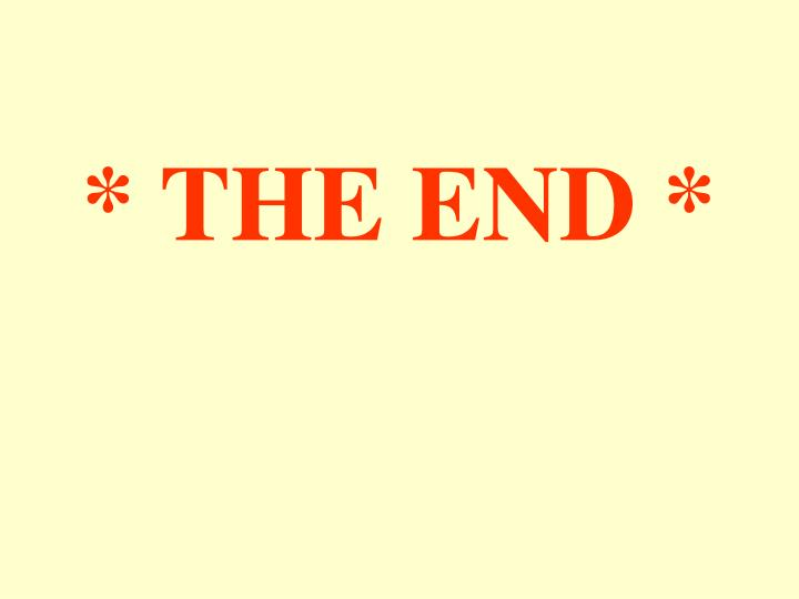 * THE END *
