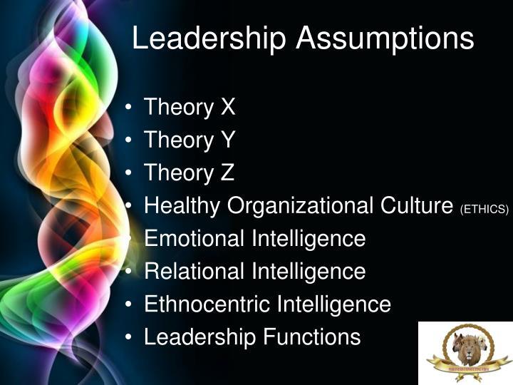 Leadership Assumptions