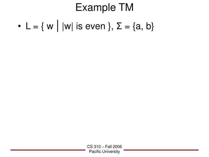 Example TM
