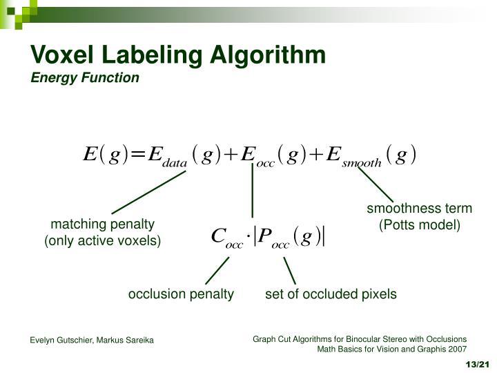 Voxel Labeling Algorithm
