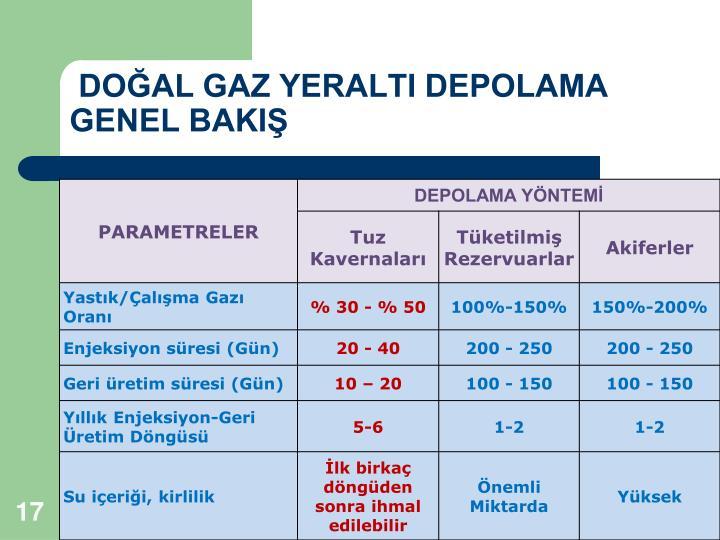 DOĞAL GAZ YERALTI DEPOLAMA        GENEL BAKIŞ