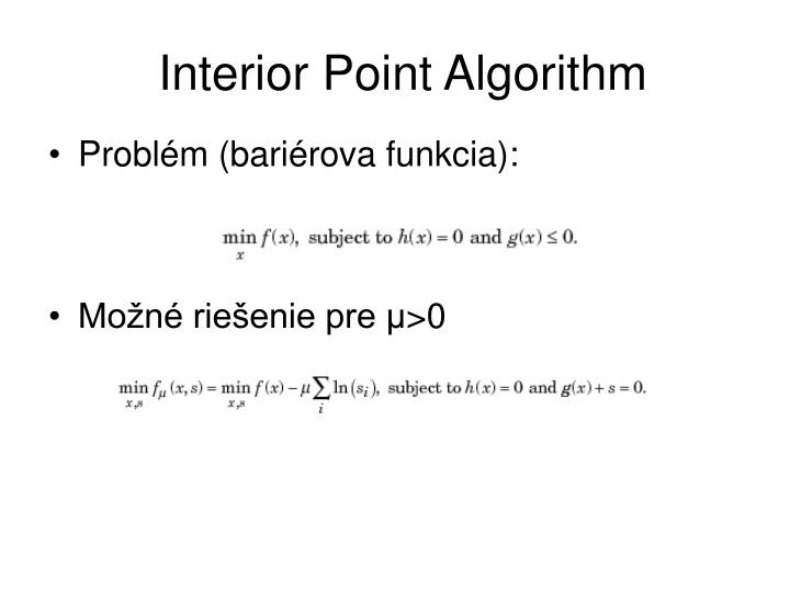 Interior Point Algorithm