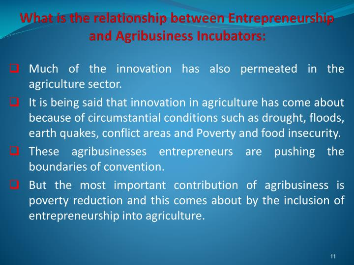 What is the relationship between Entrepreneurship and Agribusiness Incubators: