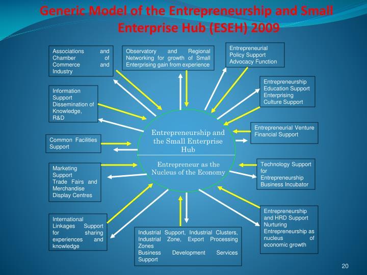 Generic Model of the Entrepreneurship and Small Enterprise Hub (ESEH) 2009